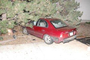 Car into tree - photo by Shane Anthony AuroraNews1.com